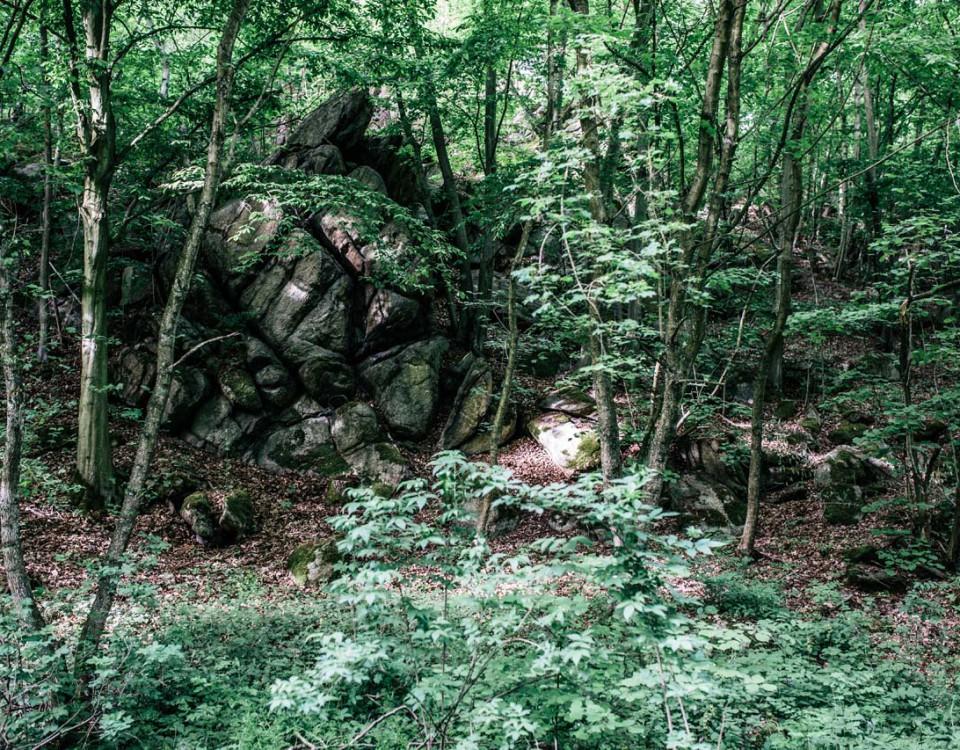 granice priroda lubos dolezal (10)