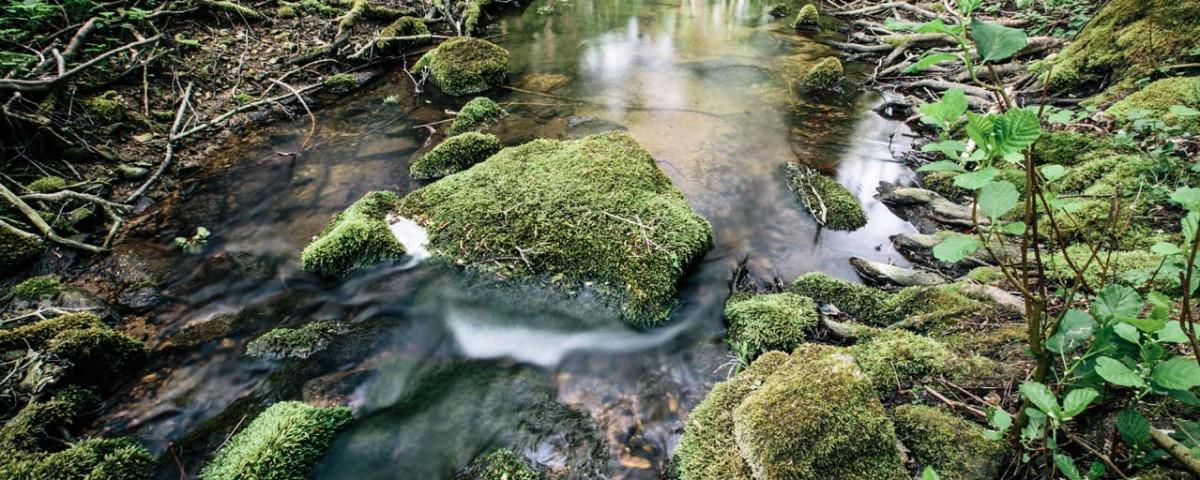 granice priroda lubos dolezal (4)