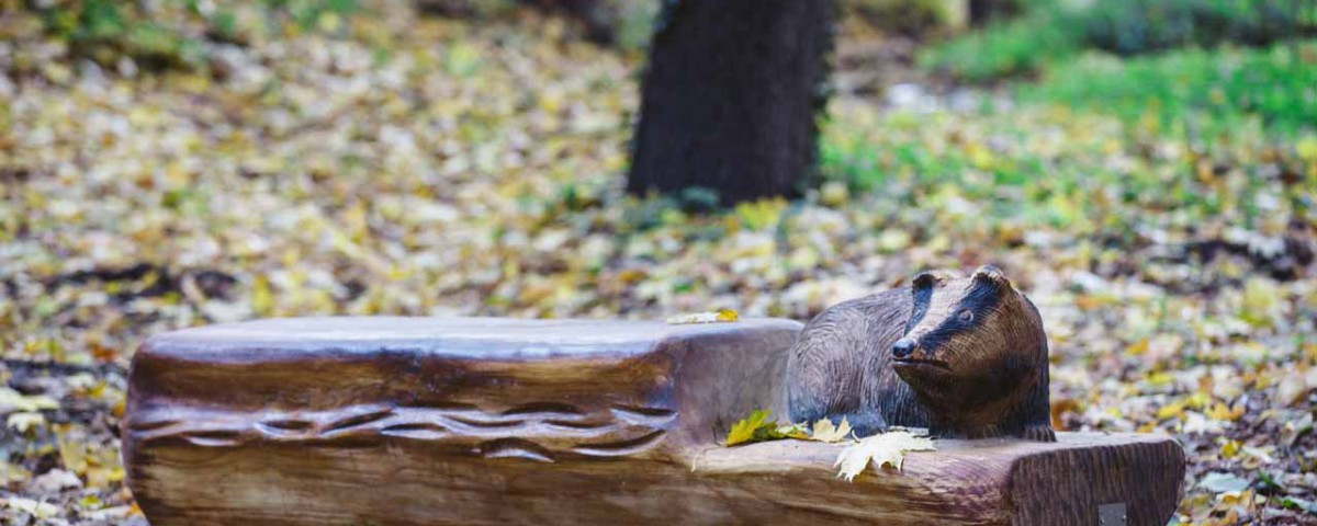 prirodni park petr vokurek (10)