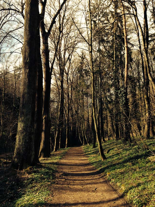 granice priroda jaro (1)